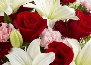 Caseyu0027s Florist